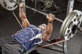 How To Increase Your Bench Press Gains  Httpwwwmarcyprocom Increase Bench Press Routine
