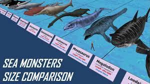 Shark Size Comparison Chart Sea Monsters Size Comparison