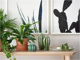 agave and cactus print on wall art ikea poster with duealberi minimal agave and cactus print tvilling poster for ikea