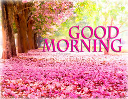 Good Morning Animated Images With Quotes Best Of Greeting Cards For Every Day Good Morning Best Pictures Animated