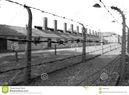 barbed wire fence concentration camp. Interesting Concentration Auschwitz Concentration Camp Germany  Prison And Barbed Wire Fence On  15062017 In Barbed Wire Fence Concentration Camp