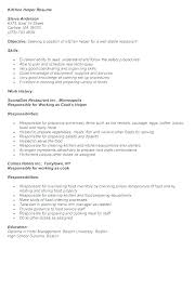 Resume Helper Template Simple Sample Resume Styles Helper Resume Styles Free Sample Resume Kitchen