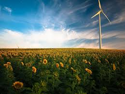 green economy un environment green economy