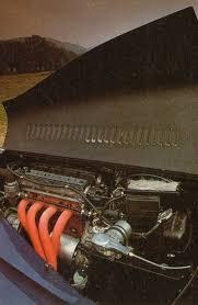rover t16 morganatica