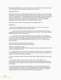 College Resume Example Student Template New Examples For Summary