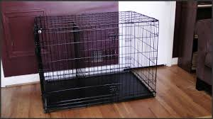 Midwest Dog Crate Size Chart Dog Crate Setup