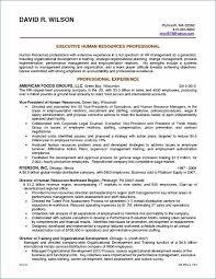 Good Resume Layout Enchanting Resume Templates Professional Professional Resume Layout Beautiful