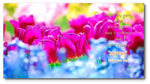 good morning night beautiful flower wishes 6 1 0