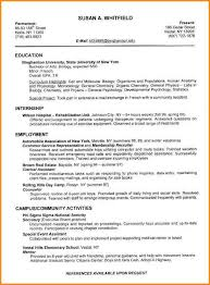 Examples Of The Perfect Resume. The Best Cv Profile Examples Ideas ...