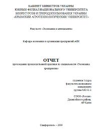 Отчет по практике пример Отчет по практике экономиста пример