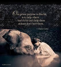 Dalai Lama English 16 Quotes Quotes Positive Quotes