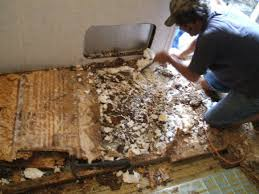 rotten wood and styrofoam removed
