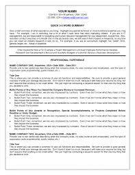 us it recruiter resume sample samples resume for job us it recruiter resume sample 3
