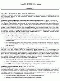 Executive Summary Resume Resume Sample