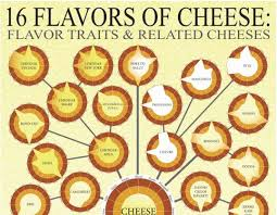 Cheese Choosing Infographics Flavors Of Cheese