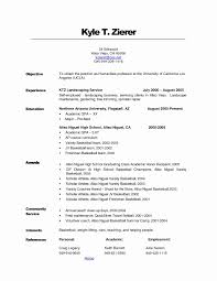Professional Resume Objective Job Resume Objective Examples Beautiful Examples Career Example 1