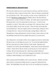 define interpretive essay persuasive essay homeschooling define interpretive essay