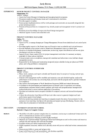 Project Controls Resume Examples Project Control Resume Samples Velvet Jobs 24