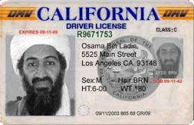 Illegal Drivers Immigrants California Licenses Of Grant Friends Liberty To Archives