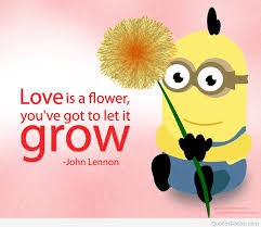 Flower Love Quotes Love is a flower quote cartoon HD 20