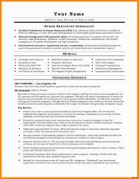 Infographic Resume Templates Examples Sample Curriculum Vitae