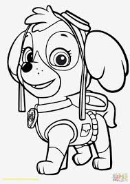 Printable Paw Patrol Coloring Pages Free Top 15612207 Attachment