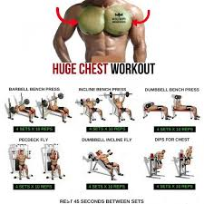 Biceps Exercise Chart Step By Step Complete Workout Tip And Guide Demographics