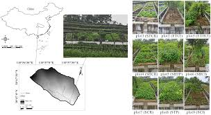 rainfall patterns on the soil loss