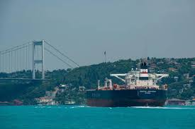 Over 41,000 vessels pass through Bosphorus in 2019 - Turkey News