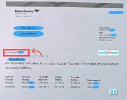 We often think that financial institutions and government departments enjoy making us jump through hoops in order to get things done. Bank Account Verification Letter For Visa Immigration Usa