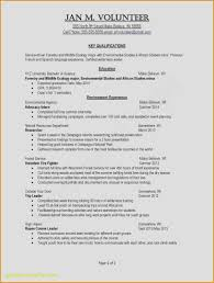 Free Examples Of Resumes Fresh Strong Resume Words New Examples