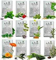 Small Picture Garden Design Garden Design with Growing Herbs Gardening