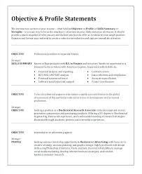 Job Application Objective Examples It Sample Resumes Resume Objective Examples For Any Job Within