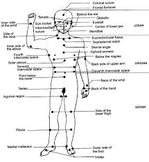 Human Body Pressure Points Diagram Body Pressure Points