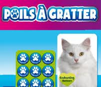 Casting fdj «poils à gratter» chiens et chats : aux urnes ! - actualité -  chat - SantéVet