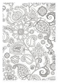 Small Picture Paisley Coloring Pages for Adults Dover Paisley Designs Coloring
