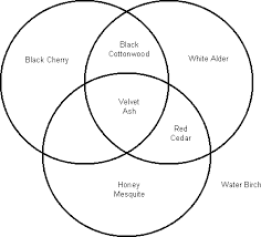 Venn Diagram Plants Venn Diagram Plants Rome Fontanacountryinn Com