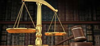 Common Law Essay Writing Common Law Essays Effortlessly Law Essay Help