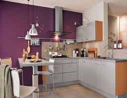 Purple Kitchen Backsplash Stunning Purple Kitchen Appliances With Stainless Steel Kitchen