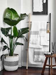 gray and white bathroom decorating ideas. liven up your bathroom with some lush greenery. picture: denise braki. ideas · indoor style gray and white decorating