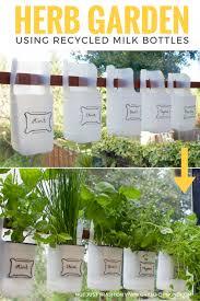 Indoor Bottle Herb Garden - From Recycled Milk Bottles