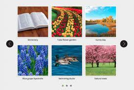 WordPress Multiple Rows Carousel | WordPress Plugin
