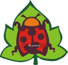 ladybug wall decal pixers we live
