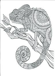 Free Printable Color Pages For Adults Free Printable Coloring Pages