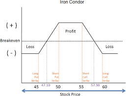 Iron Condor Chart Diagram Of Condor Wiring Diagram Third Level