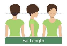 Hair Length Chart Women Womens Hair Lengths Explained Ben Beauty Salon
