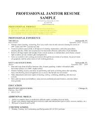 Example Of Profile On Resume Simple Profile On A Resume Resume Professional Profile Resume Career