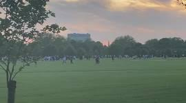 Appear at hyde park and use his superpowers to get them to stop? the stabbing, which left a young man hospitalised, has also sparked further discussion on the apparent gang culture which. J7u0s3ik Y09wm