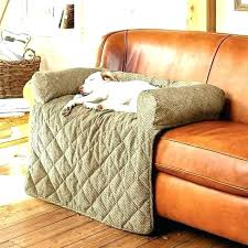 ideas furniture covers sofas. Pet Proof Couch Covers Cover Ideas Sofa Cheap Furniture Unique Sofas