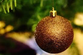 Decorating Christmas Ornaments Balls Free Images branch flower autumn fir lighting decor 78